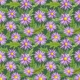 Gänseblümchen blüht nahtloses Mustergewebegewebe vektor abbildung