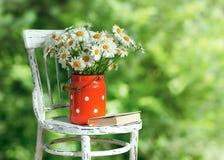 Gänseblümchen in den alten Dosen auf dem Stuhl lizenzfreie stockbilder