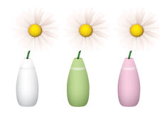 Gänseblümchen in den Vasen lizenzfreie stockfotografie