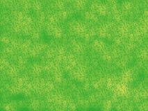 Gänseblümchen-Feld Lizenzfreies Stockbild