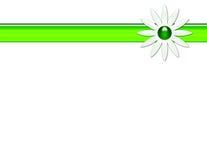 Gänseblümchen-Hintergrund Lizenzfreies Stockbild