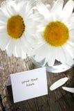Gänseblümchen im Vase und in der Papierkarte Lizenzfreie Stockfotografie