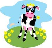 Gänseblümchen-Kuh Stockfoto