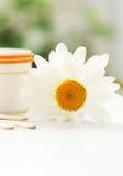 Gänseblümchen, Sahneglas, Kosmetik lizenzfreies stockbild