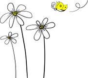 Gänseblümchen und Basisrecheneinheit Lizenzfreies Stockbild