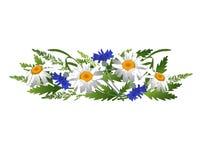 Gänseblümchen und Kornblumen mit den Ährchen Lizenzfreies Stockbild