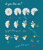Gänseblümchen und Liebe Stockfotos