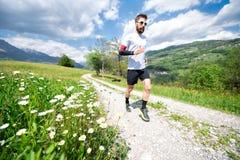 Gänseblümchenblumen, wenn ein unscharfer Läufer vorbei auf einen Schotterweg überschreitet lizenzfreies stockfoto