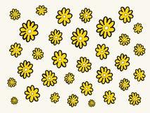 Gänseblümchenblumenmuster Stockbilder