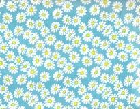 Gänseblümchenhintergrund. stockbilder