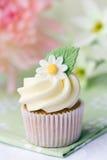 Gänseblümchenkleiner kuchen Lizenzfreie Stockfotos