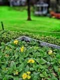 gärten Lizenzfreies Stockbild