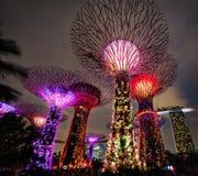 Gärten durch den Schacht Singapur stockbilder
