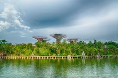 Gärten durch den Schacht, Singapur Lizenzfreie Stockbilder