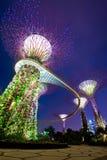 Gärten durch den Schacht Singapur Stockbild