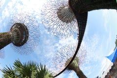 Gärten durch den Schacht in Singapur Stockfotografie