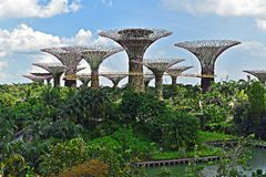 Gärten durch den Schacht, Singapur asien lizenzfreies stockbild