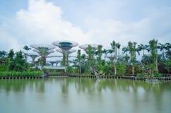 Gärten durch den Schacht, Singapur, lange Berührung Stockfotografie