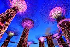 Gärten durch die Bucht an der Dämmerung, Singapur Stockbild