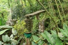Gärten Las Pozas in Xilita Mexiko lizenzfreies stockfoto