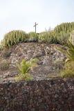 Gärten mit Kaktus Stockbild