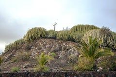 Gärten mit Kaktus Lizenzfreies Stockbild