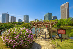 Gärten Tokyos Hamarikyu lizenzfreie stockfotografie