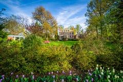 Gärten und großes Haus bei Sherwood Gardens Park, in Baltimore, M Lizenzfreie Stockfotos