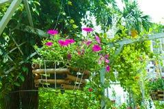 Gärten und Pflanzer bildeten ââof Holz. Stockbild