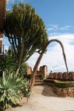 Gärten von Colomares-Schloss, Benalmadena. Lizenzfreie Stockfotografie