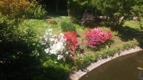 Gärten von Klausenburg Stockfoto