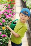 Gärtner lizenzfreie stockbilder