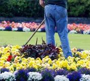 Gärtner lizenzfreie stockfotos