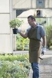 Gärtner bei der Arbeit Stockfotografie
