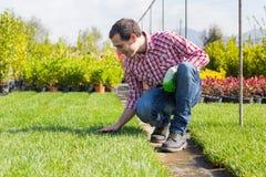 Gärtner bei der Arbeit Stockbild