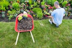 Gärtner, der einen Garten landschaftlich gestaltet Lizenzfreie Stockbilder