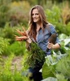 Gärtner der jungen Frau, der eine Garbe von Karotten und von Hacke hält Lizenzfreie Stockfotografie