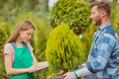 Gärtner, die mit Papieren arbeiten Lizenzfreies Stockfoto