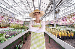 Gärtner im Gewächshaus Stockfoto