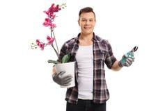Gärtner mit Orchideenbetriebs- und -gartenscheren lizenzfreie stockfotografie