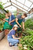 Gärtner und Florist, die im Kindertagesstättenshop arbeiten lizenzfreie stockbilder