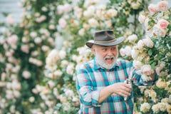 Gärtnerausschnittblumen in seinem Garten Bärtiger Mannlandwirt im Park mit Landschaftshintergrund Ruhestandsvorsorge lizenzfreie stockbilder