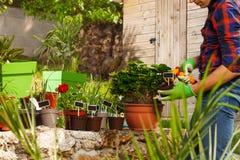 Gärtnerbewässerungsanlagen unter Verwendung der Handberieselungsanlage stockbild