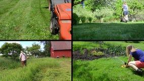 Gärtnerfrau mähen Rasen und Wasser Mannschnittgras Befestigt Collage stock video
