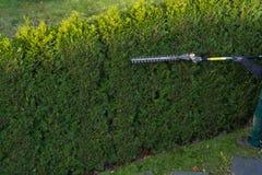 Gärtnerschnitte eine Hecke stockfotografie