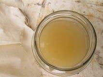 Gärungs-Apfelwein-Essig im Glas lizenzfreie stockbilder