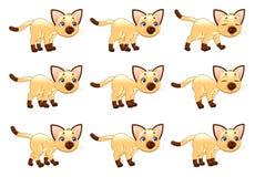 Gå animering för katt. vektor illustrationer