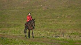 Gå av en häst över ett grönt fält med en ryttare långsam rörelse arkivfilmer