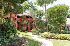 Gå banan mellan palmträd och lån i en tropisk semesterort med färgrika bungalower Royaltyfri Bild