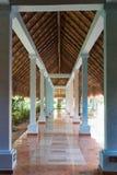 Gå banan under palmträdbladtaket med hal pollished ston Arkivbild